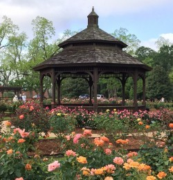 Click to view profile for Thomasville Rose Garden and Cherokee Lake Park