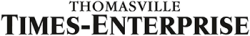 Times Enterprise Logo